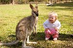 Joey Kangaroo And Girl